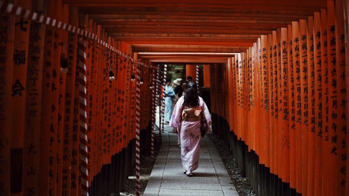 woman wearing kimono in torii gates